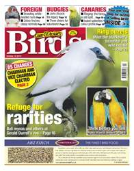 Cage & Aviary Birds issue Cage & Aviary 10 October 2012