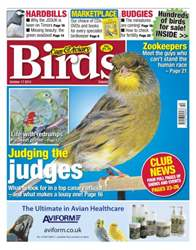 Cage & Aviary Birds issue Cage & Aviary 17 October 2012