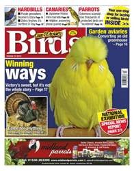 Cage & Aviary Birds issue Cage & Aviary 24 October 2012