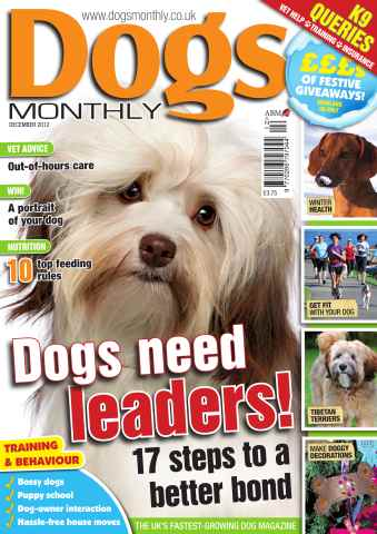 Dogs Monthly issue December 2012