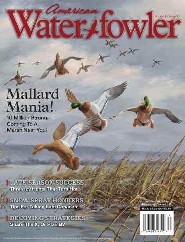 American Waterfowler issue Volume III Issue VI