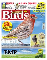 Cage & Aviary Birds issue Cage & Aviary 14 November 2012