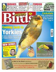 Cage & Aviary Birds issue Cage & Aviary 21 November 2012