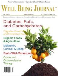 Well Being Journal issue January-February 2013