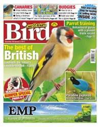Cage & Aviary Birds issue Cage & Aviary Dec 26 Jan 2 2013