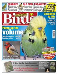 Cage & Aviary Birds issue Cage & Aviary January 9 2013