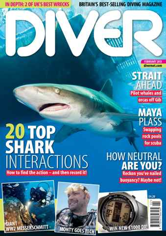 DIVER issue FEBRUARY 2013