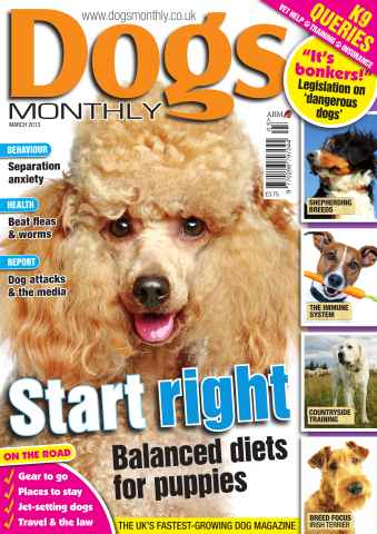 Dogs Monthly issue Dogs Monthly March 2013