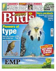 Cage & Aviary Birds issue Cage & Aviary 6 February 2013