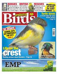 Cage & Aviary Birds issue Cage & Aviary 13 February 2013