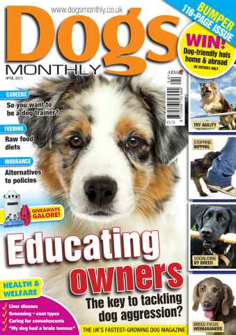 Dogs Monthly issue Dogs Monthly April 2013
