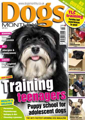 Dogs Monthly issue Dogs Monthly May 2013