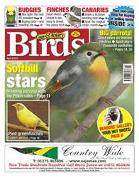 Cage & Aviary Birds issue Cage & Aviary 3 April 2013