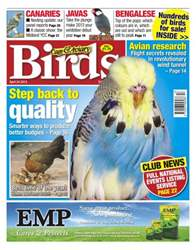 Cage & Aviary Birds issue Cage & Aviary 24 April 2013