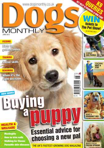 Dogs Monthly issue Dogs Monthly June 2013