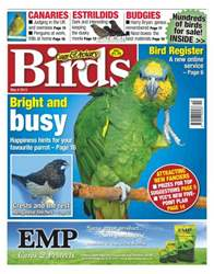 Cage & Aviary Birds issue Cage & Aviary 8 May 2013