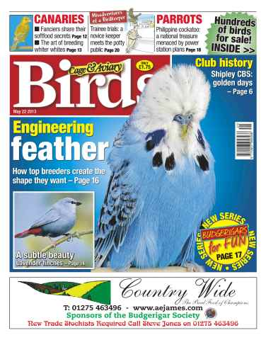 Cage & Aviary Birds issue Cage & Aviary 22 May 2013