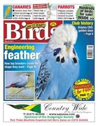 Cage & Aviary Birds issue Cage & Aviary 22 May 2013