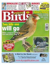 Cage & Aviary Birds issue Cage & Aviary 29 May 2013