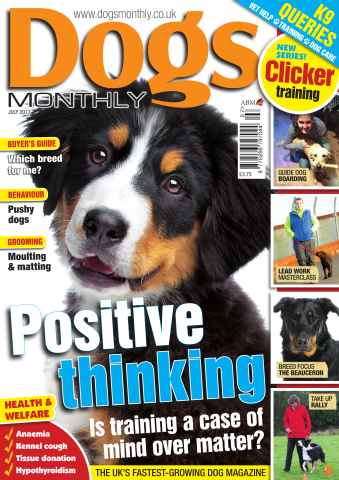 Dogs Monthly issue Dogs Monthly July 2013