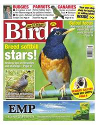 Cage & Aviary Birds issue Cage & Aviary 5 June 2013