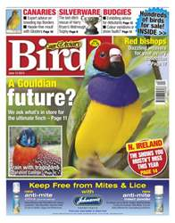 Cage & Aviary Birds issue Cage & Aviary 12 June 2013