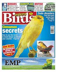 Cage & Aviary Birds issue Cage & Aviary 19 June 2013