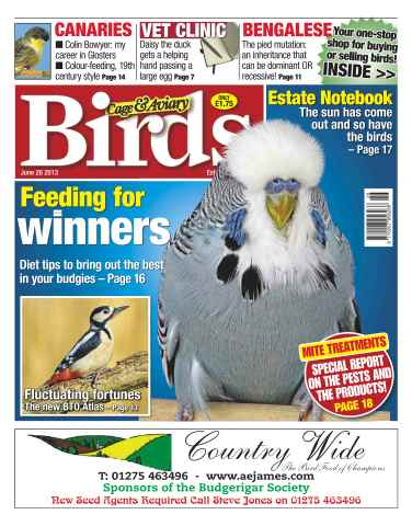 Cage & Aviary Birds issue Cage & Aviary 26 June 2013