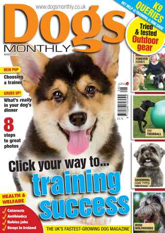 Dogs Monthly issue Dogs Monthly August 2013