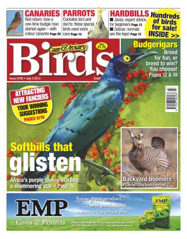 Cage & Aviary Birds issue Cage & Aviary Issue 5759
