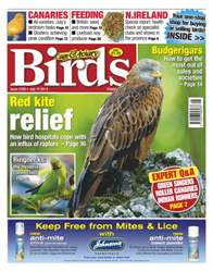 Cage & Aviary Birds issue Cage & Aviary Issue 5760