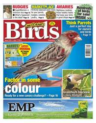 Cage & Aviary Birds issue Cage & Aviary Issue 5761