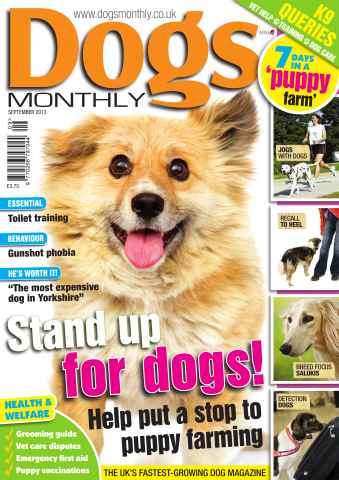 Dogs Monthly issue Dogs Monthly September 2013