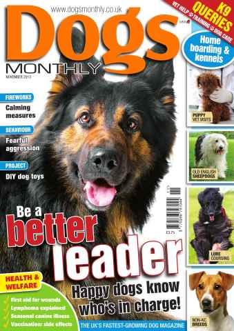 Dogs Monthly issue Dogs Monthly November 2013