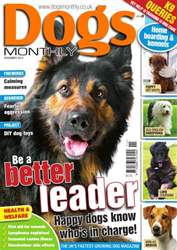 Dogs Monthly November 2013 issue Dogs Monthly November 2013