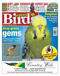 Cage & Aviary Birds issue No.5771 Grey Green Gems