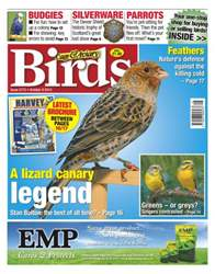 Cage & Aviary Birds issue No.5773 A Lizard Canary Legend