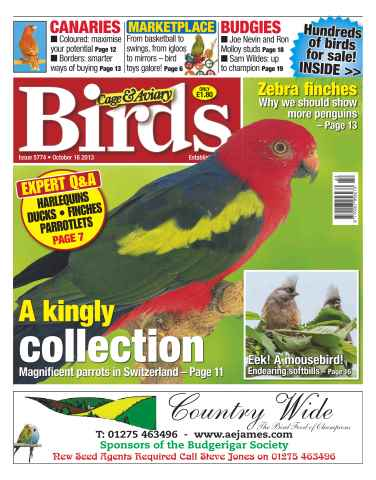 Cage & Aviary Birds issue No.5774 A Kingly Collection
