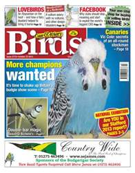 Cage & Aviary Birds issue 5775 More Champions Wanted