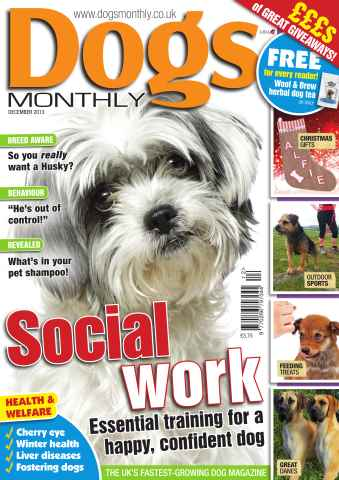 Dogs Monthly issue Dogs Monthly December 2013