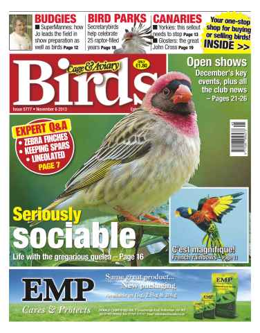 Cage & Aviary Birds issue No.5777 Seriously Sociable