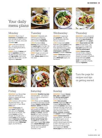 Slimming world march april 2010 Slimming world my account