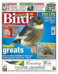 Cage & Aviary Birds issue No.5778 Gloster Greats