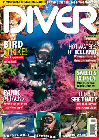 DIVER issue DECEMBER 2013