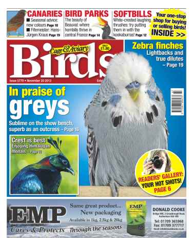 Cage & Aviary Birds issue No.5779 In Praise of Greys