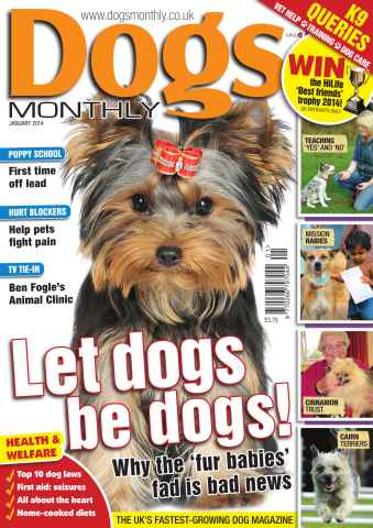 Dogs Monthly issue Dogs Monthly January 2014