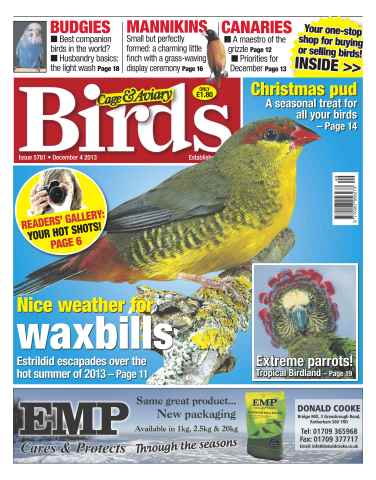 Cage & Aviary Birds issue No.5781Nice weather for Waxbills