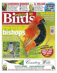 Cage & Aviary Birds issue No.5782 Bring back the Bishops