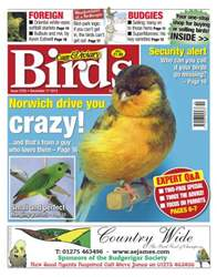 Cage & Aviary Birds issue No.5783 Norwich drive you crazy!