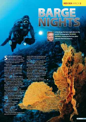 DIVER Preview 35